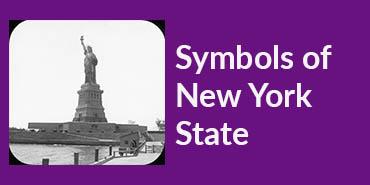 Symbols_of_NYS_Button.jpg