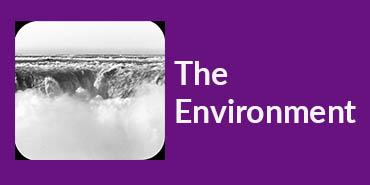The_Environment_Button.jpg